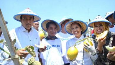 Photo of Cerita Menteri Rini Temui Petani Difabel yang Sukses di Lamongan