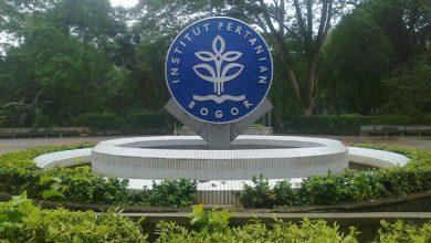 Photo of IPB Masuk Top 100 QS World University Ranking
