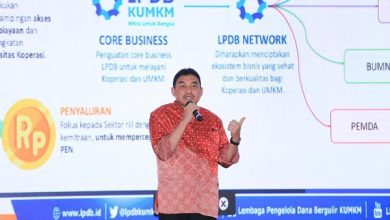 Photo of Transformasi dan Digitalisasi Kunci Sukses LPDB-KUMKM Salurkan Dana Bergulir 2020