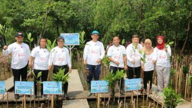 Photo of Dukung Pencegahan Abrasi, Bank DKI Siapkan 5.000 Bibit Mangrove