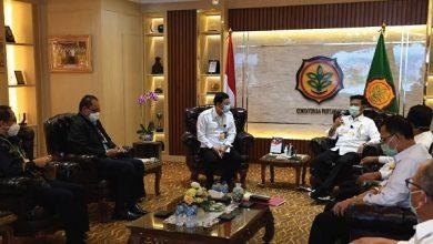 Photo of BUMN Klaster Pangan Perkuat Sinergi dengan Kementerian Pertanian