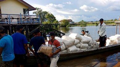 Photo of Dukung Ketahanan Pangan di Perbatasan Indonesia-Malaysia, PT. Pertani Pasok Kebutuhan Benih Padi di Entikong