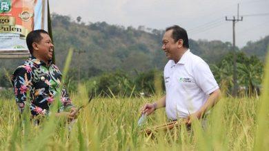 Photo of Bupati Sumedang Dony Ahmad Munir Berharap Kerjasama dengan DKI Bisa Berkelanjutan