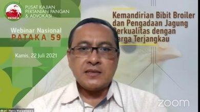 Photo of Berdikari Berkomitmen Perluas Kemitraan Bersama Peternak Rakyat