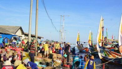 Photo of PT Perikanan Indonesia Siap Hadir untuk Nelayan dan Topang Bisnis Perikanan