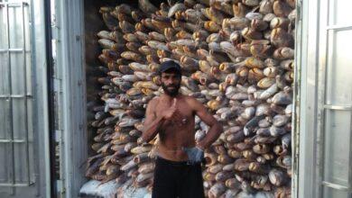 Photo of Pasar Ikan Modern Muara Baru Gelar Vaksinasi Massal 3 Hari, Catat Tanggalnya
