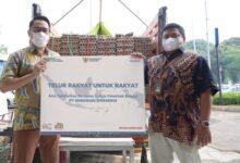 Photo of Ini Langkah Taktis Berdikari Persero Jalankan Amanat Pemerintah Dongkrak Harga Telur